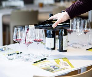 Tipp für Weihnachten: Ein Wein-Seminar verschenken