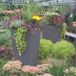 Herbstplanzen und Pflanzen für Gräber