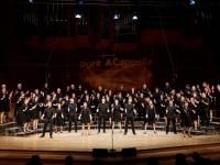 Chöre wie WIR Vokal Total – Deutschlands größtes A-Cappella-Festival