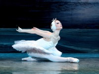 SCHWANENSEE- Sankt Petersburger Klassisches Ballett