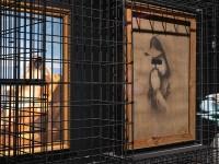 Ikonen der Urban Art